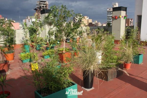 Terrazas y Balcones Verdes para la Ciudad\